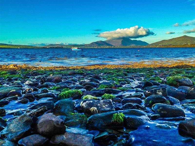 Skellig Coast tour